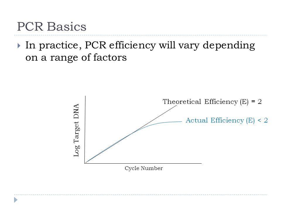PCR Basics In practice, PCR efficiency will vary depending on a range of factors Log Target DNA Cycle Number Theoretical ActualEfficiency (E) < 2 Effi