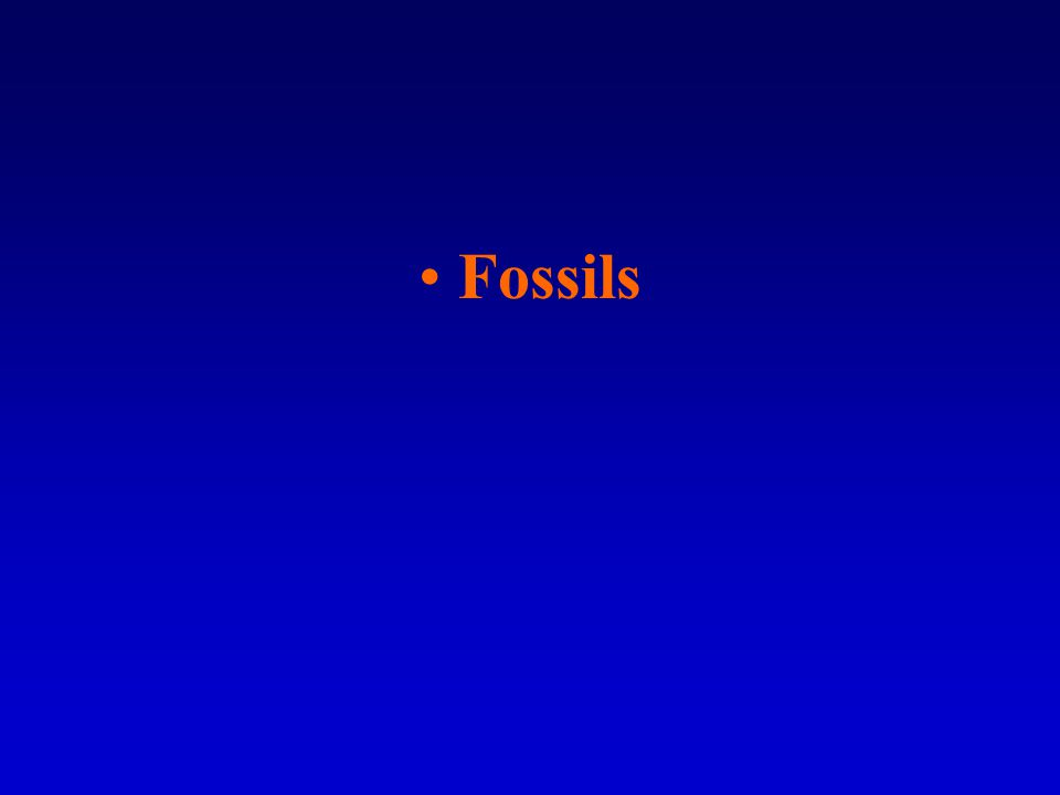 Paleozoic –Time of ancient life.–Fossils are different from anything found on the Earth today.