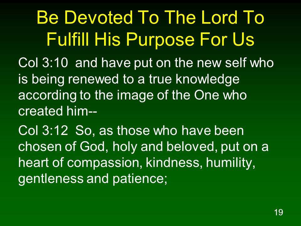 19 Be Devoted To The Lord To Fulfill His Purpose For Us Col 3:10 and have put on the new self who is being renewed to a true knowledge according to th