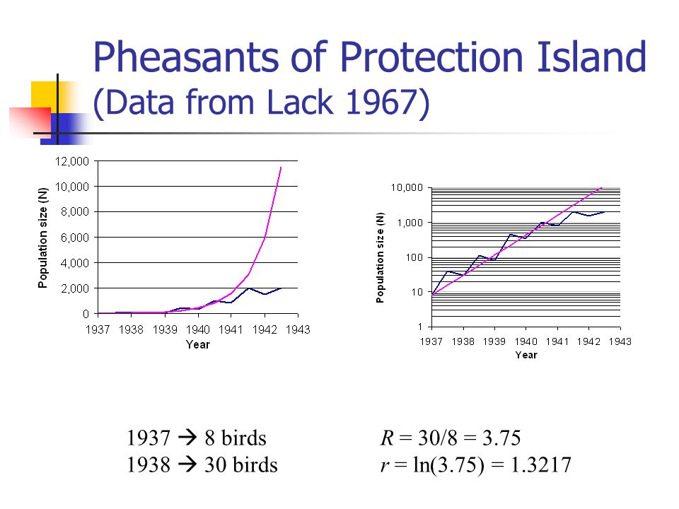 Pheasants of Protection Island (Data from Lack 1967) 1937 8 birds 1938 30 birds R = 30/8 = 3.75 r = ln(3.75) = 1.3217