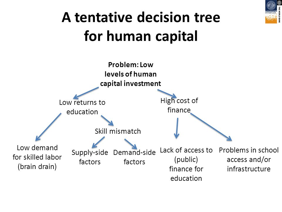 A tentative decision tree for human capital Problem: Low levels of human capital investment Low returns to education High cost of finance Skill mismatch Problems in school access and/or infrastructure Demand-side factors Supply-side factors Lack of access to (public) finance for education Low demand for skilled labor (brain drain)