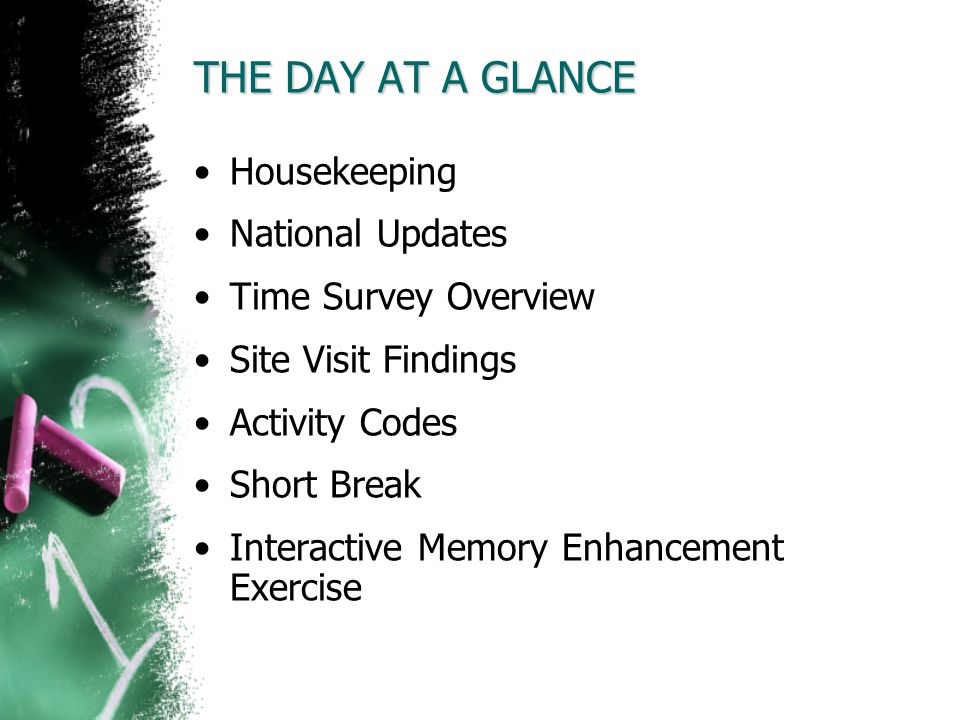 THE DAY AT A GLANCE Housekeeping National Updates Time Survey Overview Site Visit Findings Activity Codes Short Break Interactive Memory Enhancement E