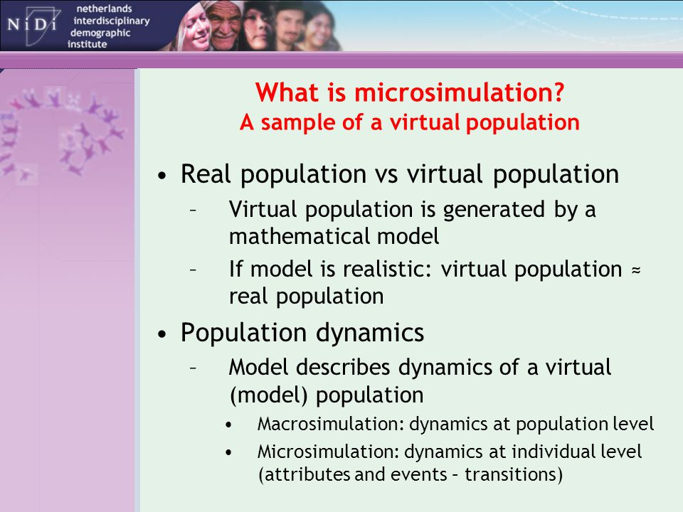 What is microsimulation.