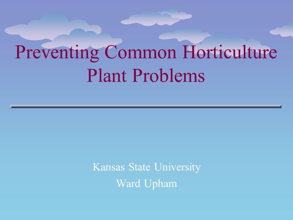 Preventing Common Horticulture Plant Problems Kansas State University Ward Upham