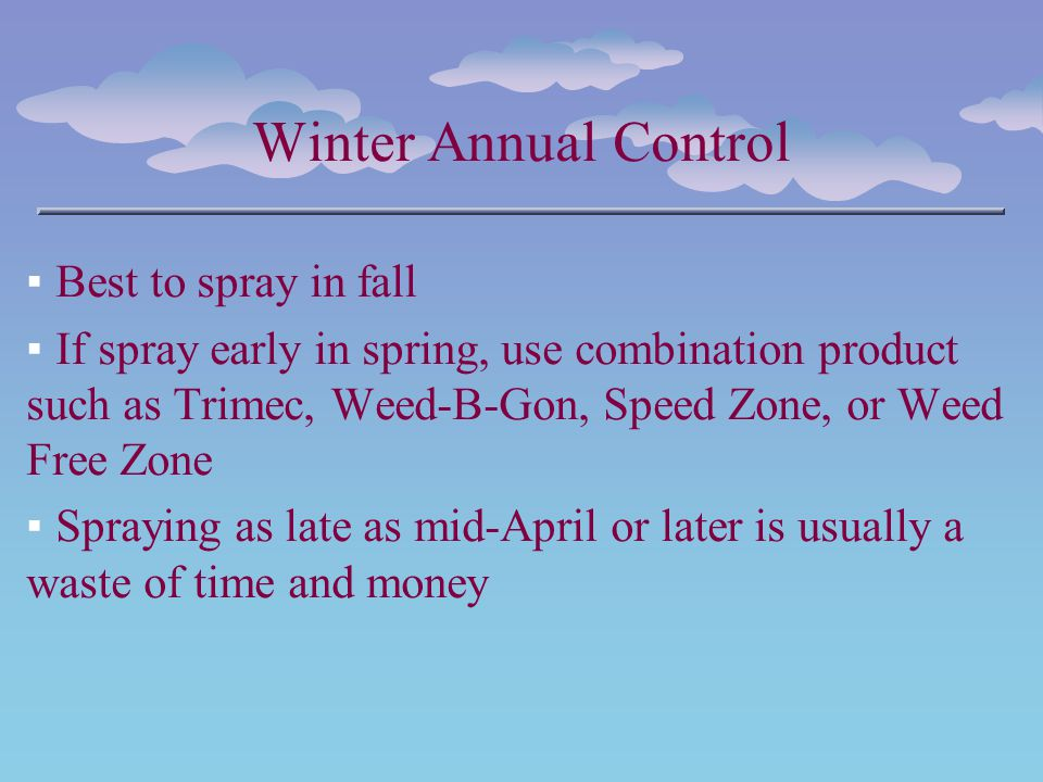 Winter Annual Control Best to spray in fall If spray early in spring, use combination product such as Trimec, Weed-B-Gon, Speed Zone, or Weed Free Zon