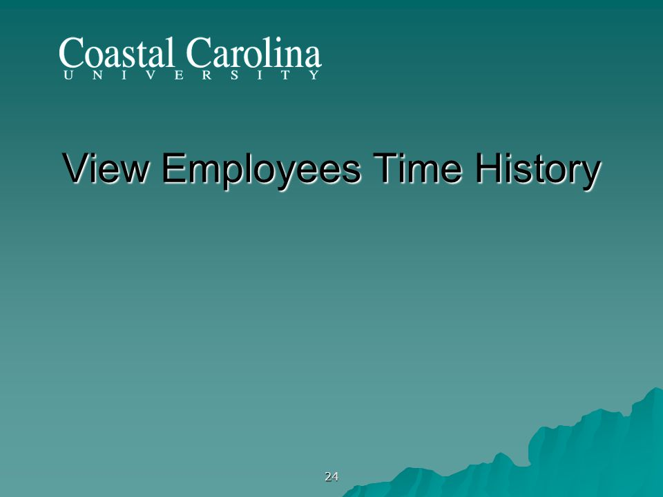 24 View Employees Time History