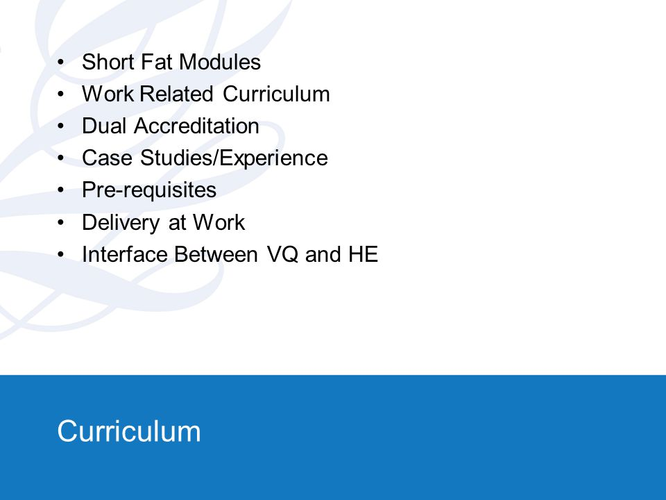 Curriculum Short Fat Modules Work Related Curriculum Dual Accreditation Case Studies/Experience Pre-requisites Delivery at Work Interface Between VQ and HE