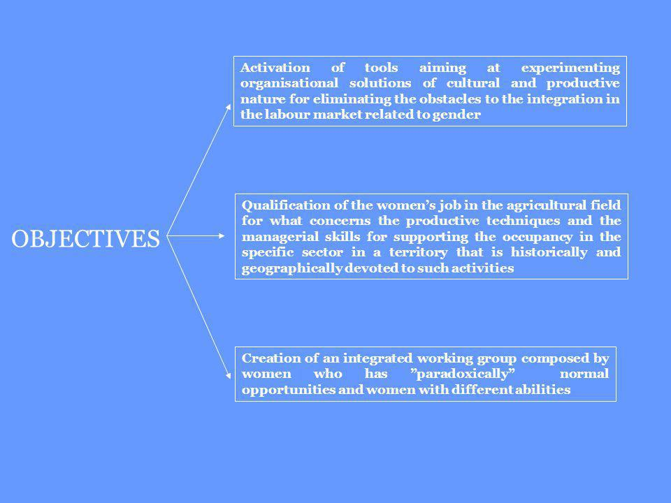 Creation of an integrated working group composed by women who has paradoxically normal opportunities and women with different abilities OBJECTIVES Act