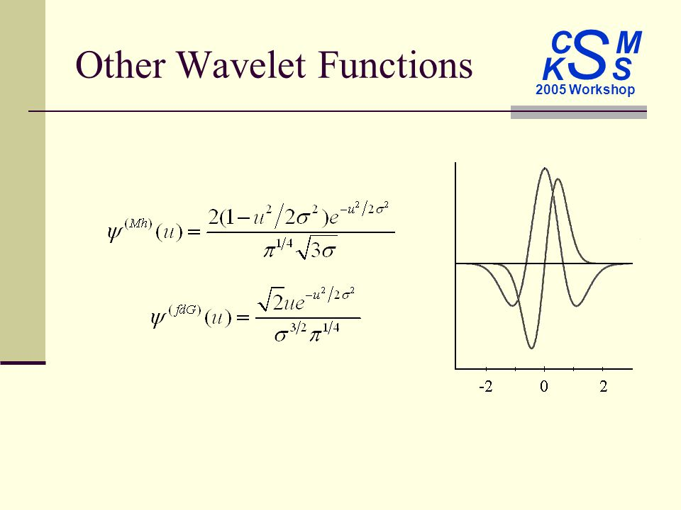 C M S 2005 Workshop K S Other Wavelet Functions