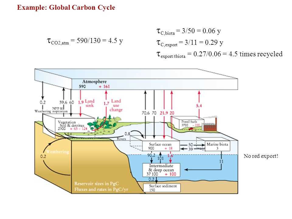 CO2,atm = 590/130 = 4.5 y C,biota = 3/50 = 0.06 y C,export = 3/11 = 0.29 y export/tbiota = 0.27/0.06 = 4.5 times recycled Example: Global Carbon Cycle