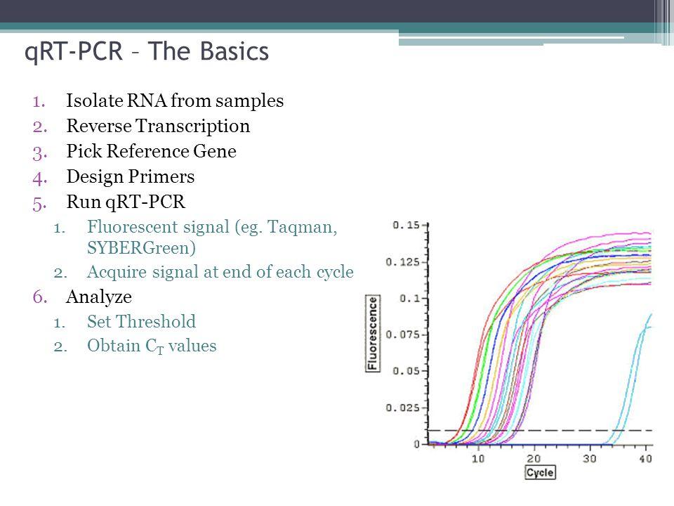 qRT-PCR – The Basics 1.Isolate RNA from samples 2.Reverse Transcription 3.Pick Reference Gene 4.Design Primers 5.Run qRT-PCR 1.Fluorescent signal (eg.