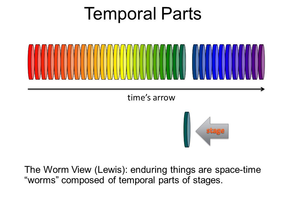 Temporal Parts The Worm View (Lewis): enduring things are space-time worms composed of temporal (time) parts or stages. times arrow
