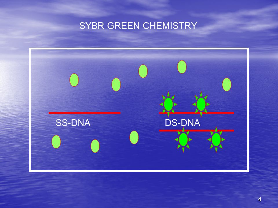 4 SYBR GREEN CHEMISTRY SS-DNA DS-DNA