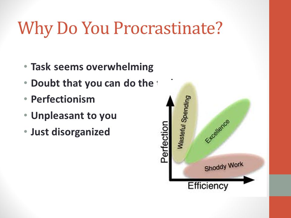 Why Do You Procrastinate.