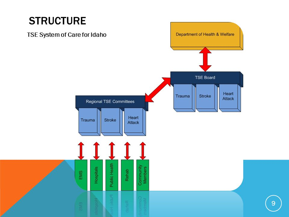 STRUCTURE 9 TSE System of Care for Idaho