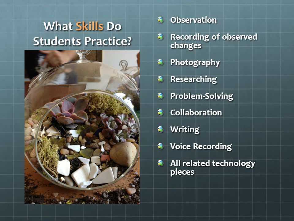 What Skills Do Students Practice? Observation Recording of observed changes PhotographyResearchingProblem-SolvingCollaborationWriting Voice Recording