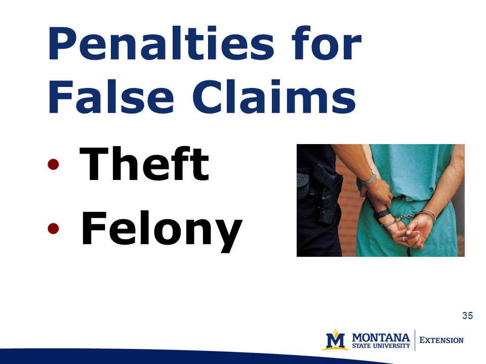 Penalties for False Claims Theft Felony 35