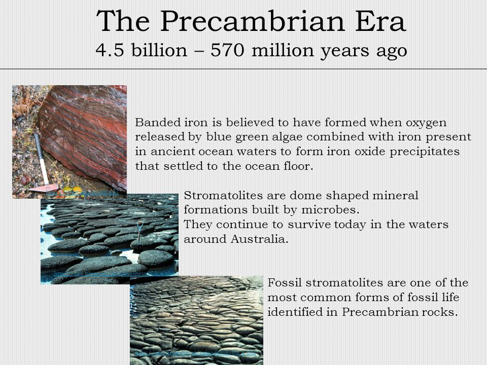 The Precambrian Era 4.5 billion – 570 million years ago Banded iron is believed to have formed when oxygen released by blue green algae combined with iron present in ancient ocean waters to form iron oxide precipitates that settled to the ocean floor.