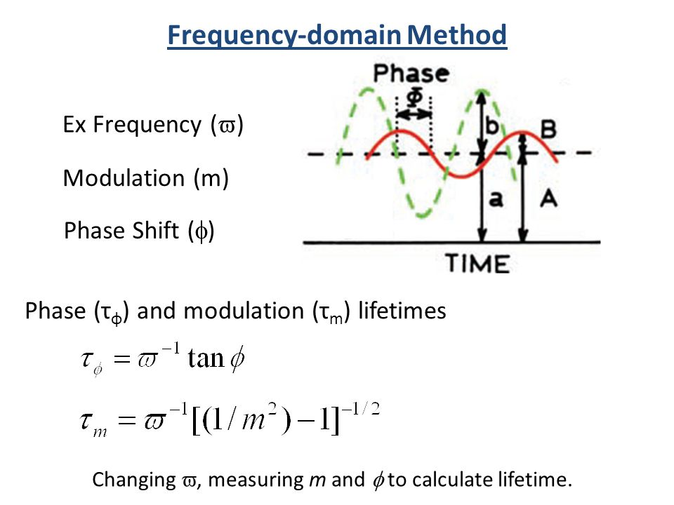 Frequency-domain Method Modulation (m) Phase Shift ( ) Ex Frequency ( ) Changing, measuring m and to calculate lifetime. Phase (τ φ ) and modulation (
