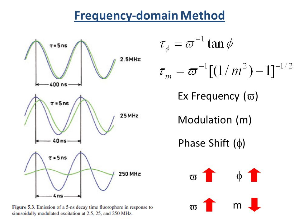 Frequency-domain Method m Modulation (m) Phase Shift ( ) Ex Frequency ( )