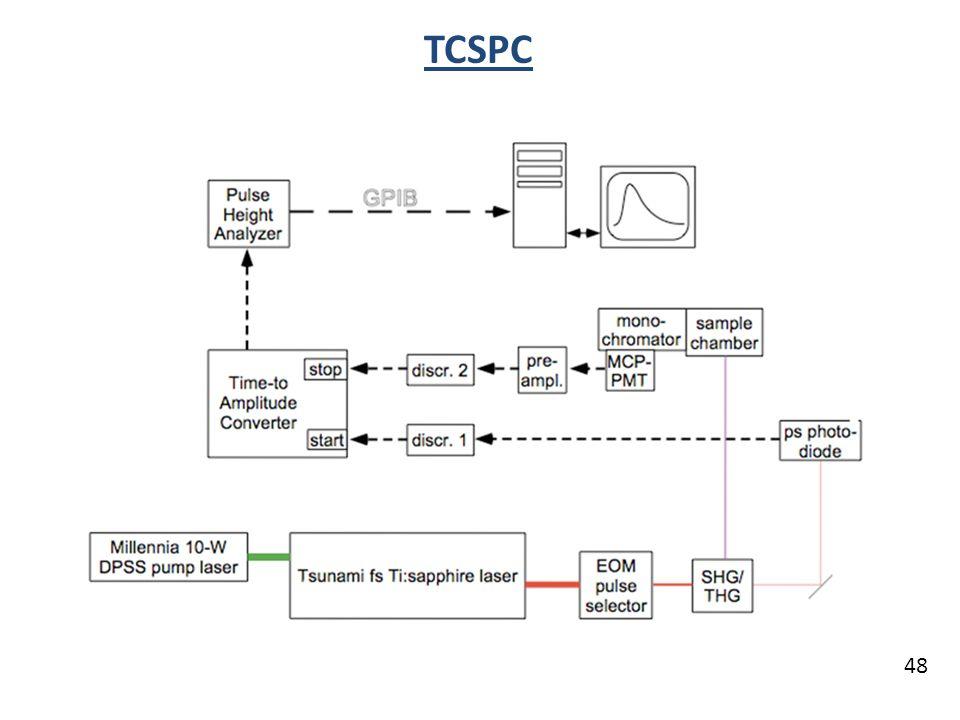 48 TCSPC
