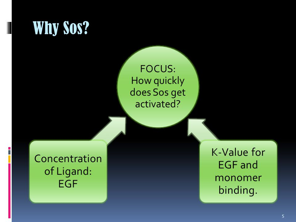 Why Sos.5 FOCUS: How quickly does Sos get activated.