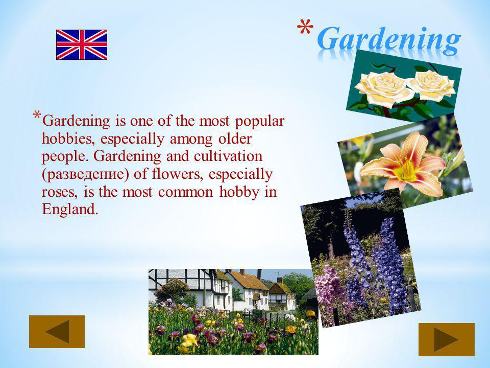 * Gardening is one of the most popular hobbies, especially among older people. Gardening and cultivation (разведение) of flowers, especially roses, is