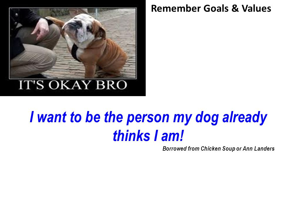 I want to be the person my dog already thinks I am! Borrowed from Chicken Soup or Ann Landers Remember Goals & Values