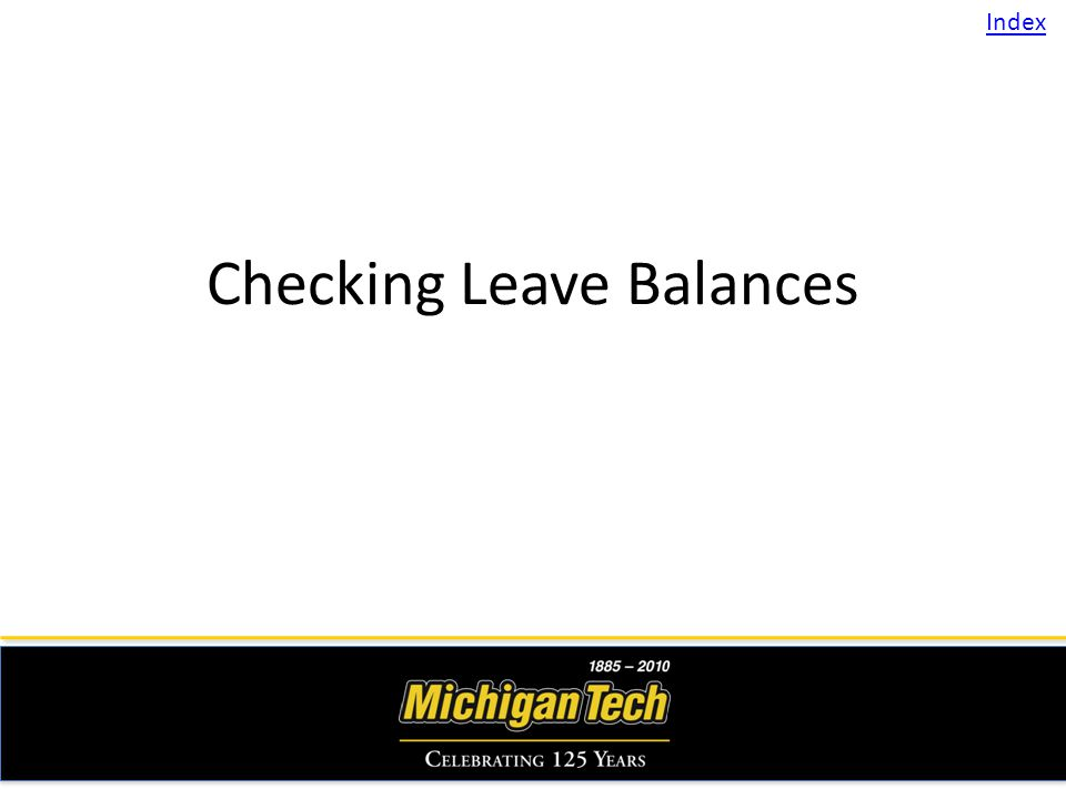 Checking Leave Balances Index