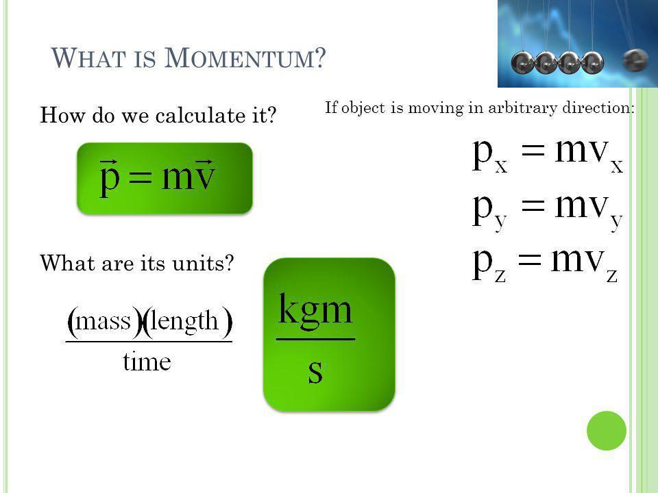 Q UICK C ONCEPTUAL Q UIZ Can a hummingbird have more momentum than a rhino.