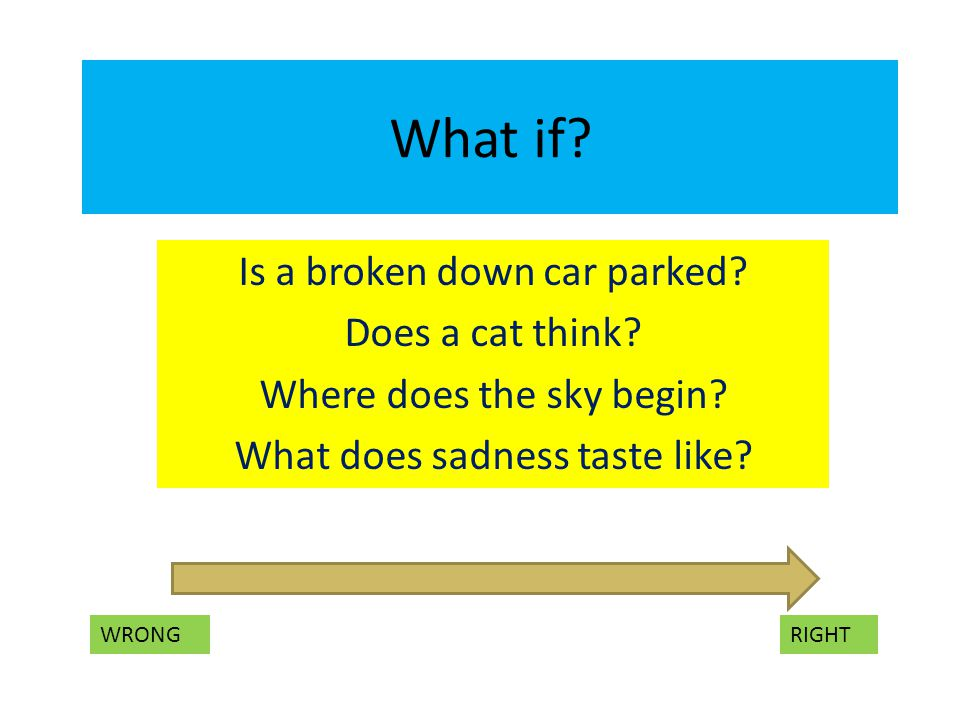What if. Is a broken down car parked. Does a cat think.
