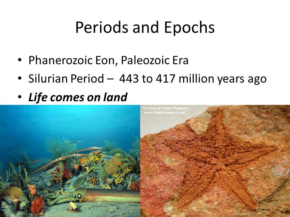 Periods and Epochs Phanerozoic Eon, Paleozoic Era Silurian Period – 443 to 417 million years ago Life comes on land