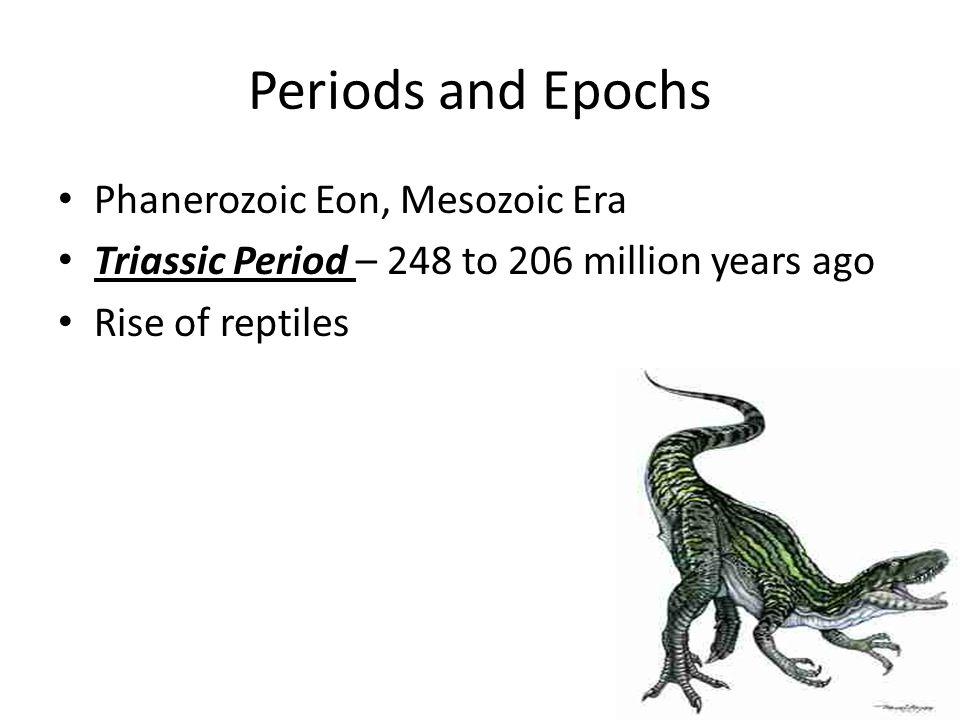 Periods and Epochs Phanerozoic Eon, Mesozoic Era Triassic Period – 248 to 206 million years ago Rise of reptiles
