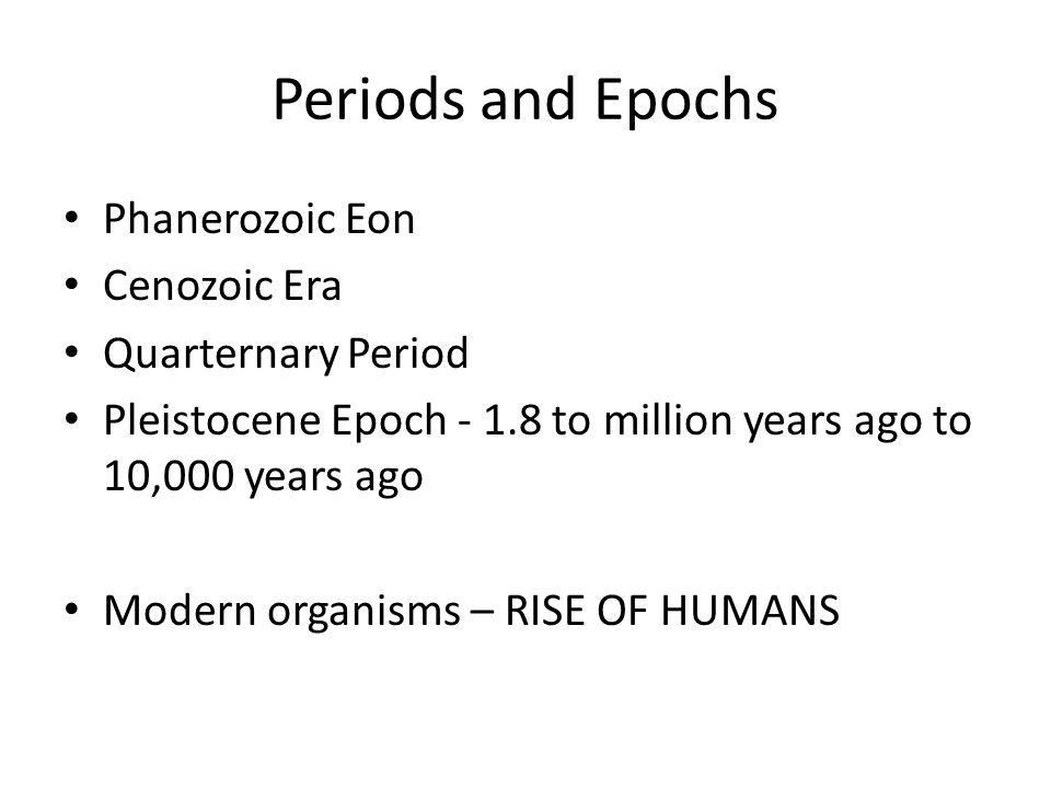 Periods and Epochs Phanerozoic Eon Cenozoic Era Quarternary Period Pleistocene Epoch - 1.8 to million years ago to 10,000 years ago Modern organisms –