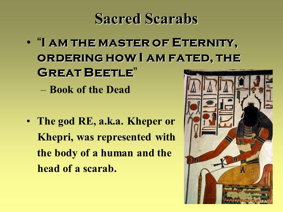 Sacred Scarabs I am the master of Eternity, ordering how I am fated, the Great Beetle I am the master of Eternity, ordering how I am fated, the Great Beetle –Book of the Dead The god RE, a.k.a.