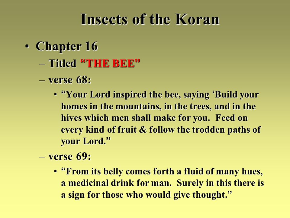 Insects of the Koran Chapter 16Chapter 16 –Titled THE BEE –Titled THE BEE –verse 68: Your Lord inspired the bee, saying Build your homes in the mountains, in the trees, and in the hives which men shall make for you.