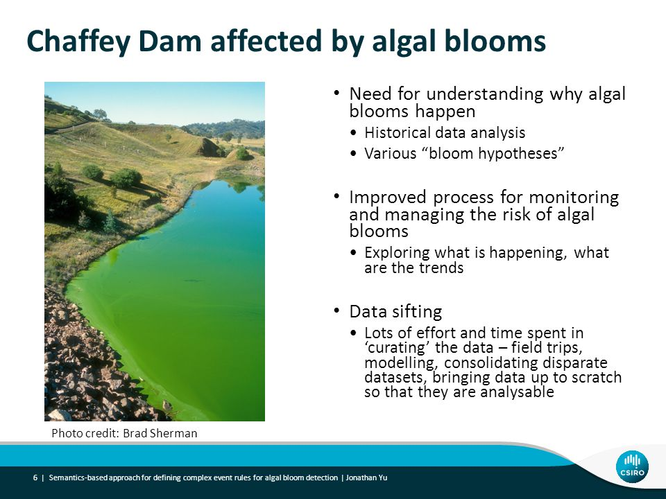 Chaffey Dam affected by algal blooms Need for understanding why algal blooms happen Historical data analysis Various bloom hypotheses Improved process