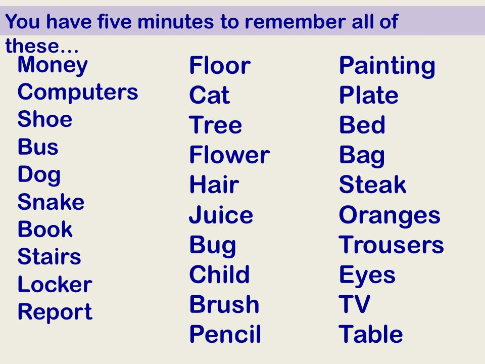 Money Computers Shoe Bus Dog Snake Book Stairs Locker Report Floor Cat Tree Flower Hair Juice Bug Child Brush Pencil Painting Plate Bed Bag Steak Oranges Trousers Eyes TV Table You have five minutes to remember all of these…