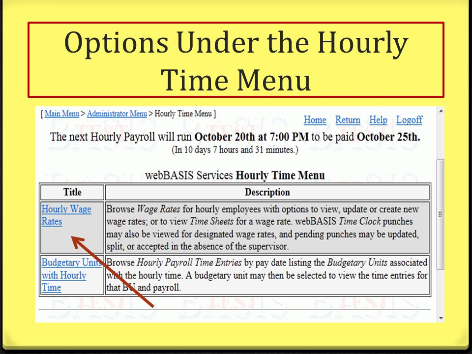 Options Under the Hourly Time Menu