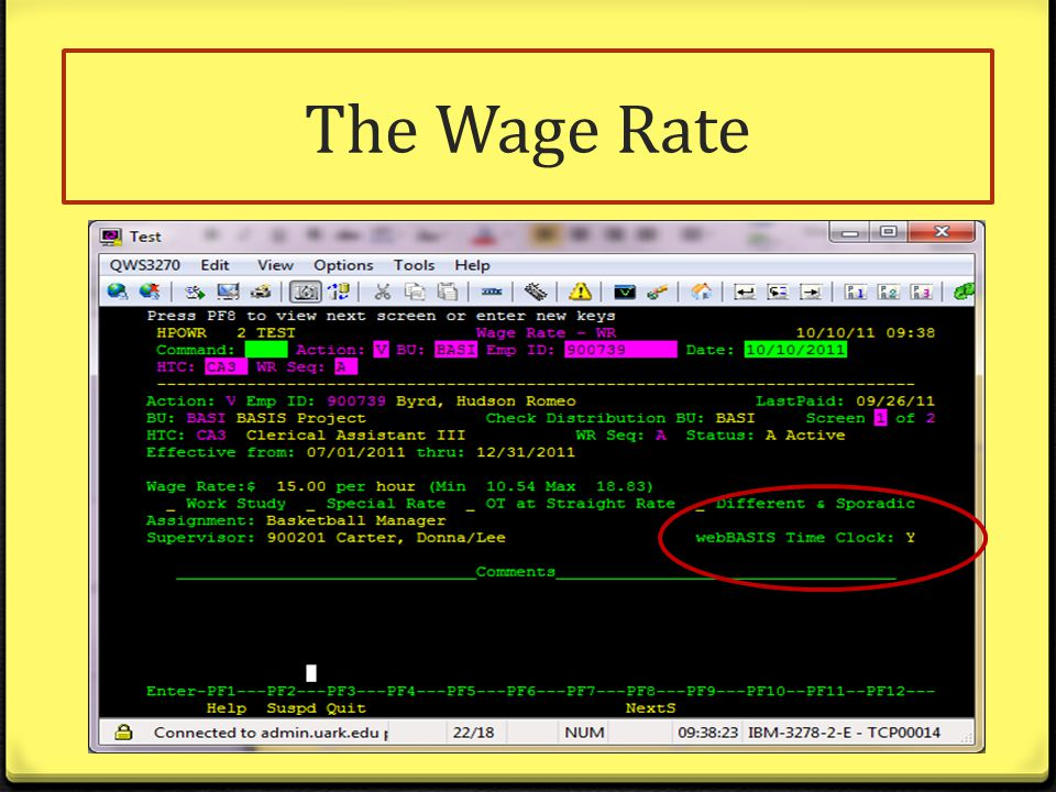 The Wage Rate