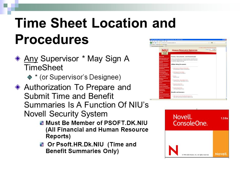 Time Sheet Location and Procedures Any Supervisor * May Sign A TimeSheet * (or Supervisors Designee) Authorization To Prepare and Submit Time and Benefit Summaries Is A Function Of NIUs Novell Security System Must Be Member of PSOFT.DK.NIU (All Financial and Human Resource Reports) Or Psoft.HR.Dk.NIU (Time and Benefit Summaries Only)