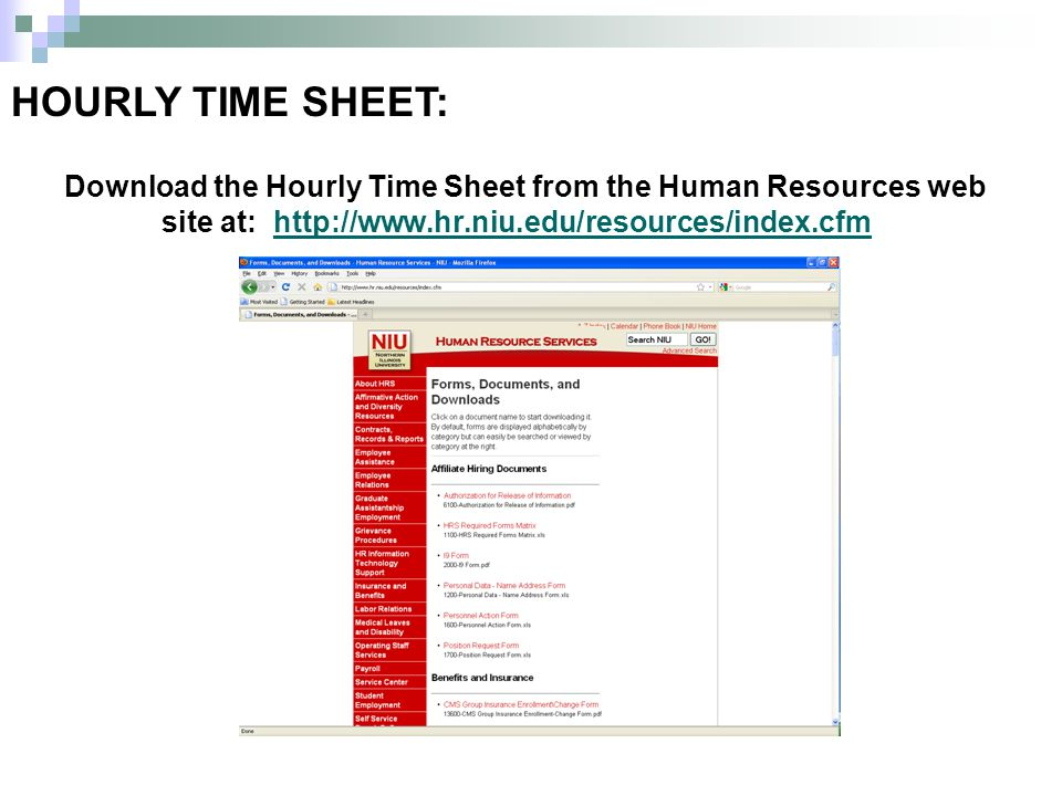 HOURLY TIME SHEET: Download the Hourly Time Sheet from the Human Resources web site at: http://www.hr.niu.edu/resources/index.cfmhttp://www.hr.niu.edu