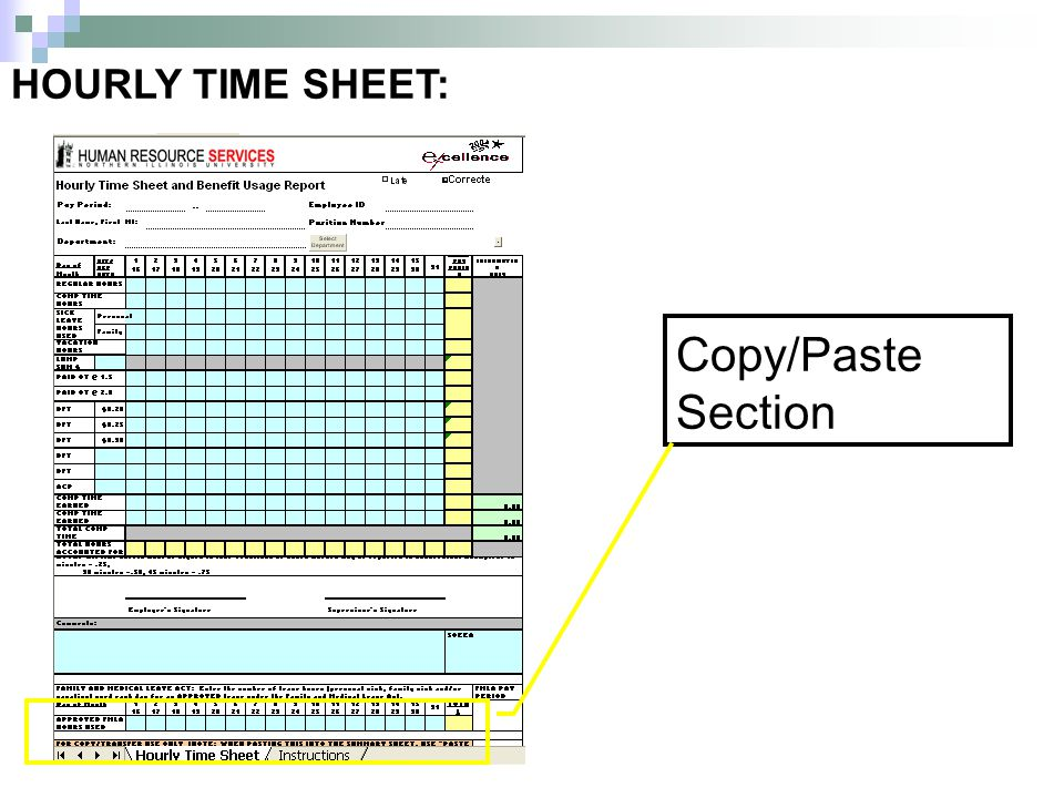 HOURLY TIME SHEET: Copy/Paste Section