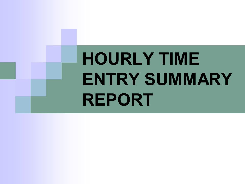HOURLY TIME ENTRY SUMMARY REPORT