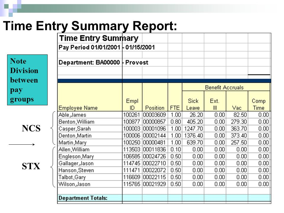 Time Entry Summary Report: NCS STX Note Division between pay groups