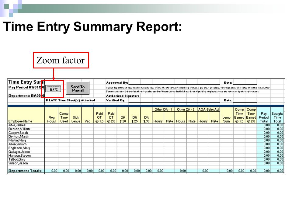 Time Entry Summary Report: Zoom factor
