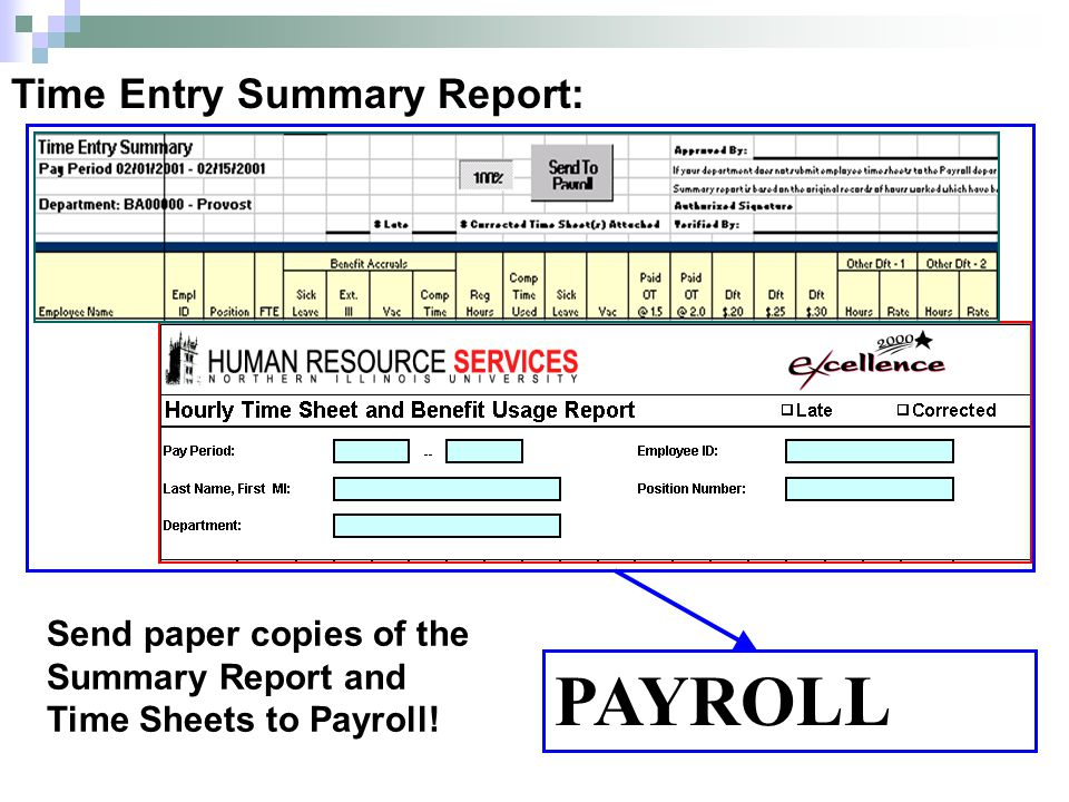PAYROLL Time Entry Summary Report: Send paper copies of the Summary Report and Time Sheets to Payroll!