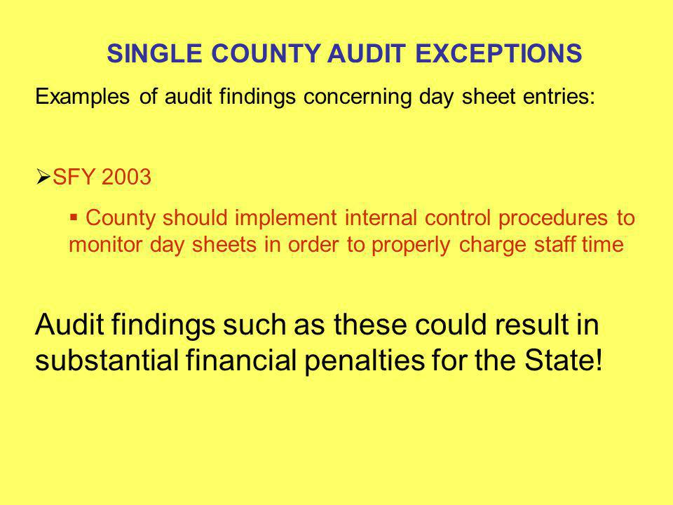 SINGLE COUNTY AUDIT EXCEPTIONS Examples of audit findings concerning day sheet entries: SFY 2004 one of five employees tested had incorrectly charged