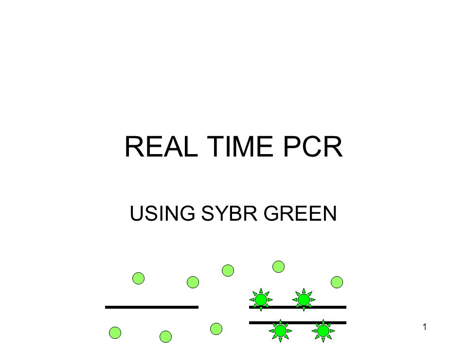 1 REAL TIME PCR USING SYBR GREEN