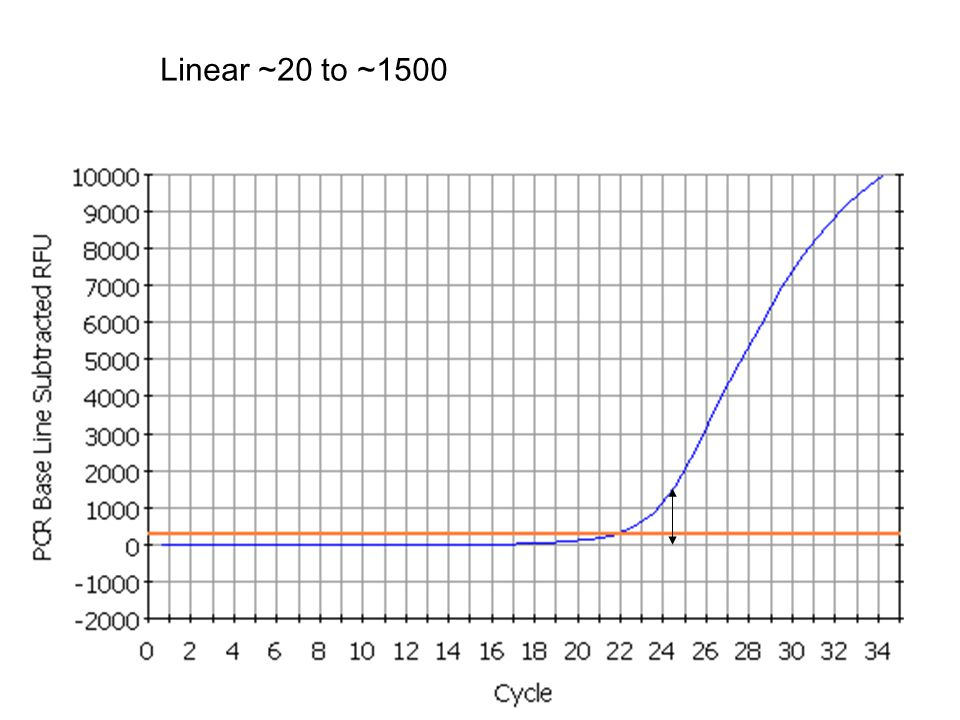 13 Linear ~20 to ~1500